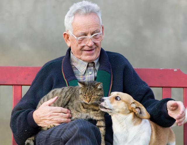 Thú cưng giúp người lớn tuổi cải thiện sức khỏe - Ảnh 1.