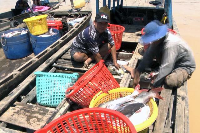Cá lồng bè lại chết trắng sông La Ngà - Ảnh 4.