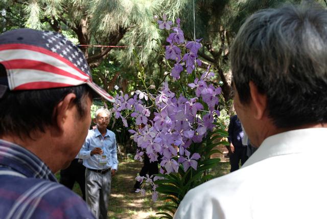 Lan khoe sắc quý phái ở Nha Trang - Ảnh 9.
