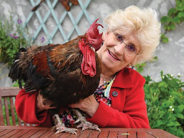 Tiếng gáy con gà trống làm dậy sóng nước Pháp - Ảnh 1.
