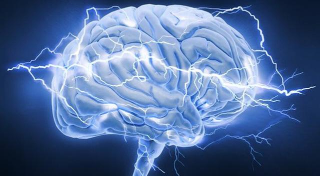 Học những kỹ năng mới - chìa khóa đảo ngược quá trình thoái hóa não ở người già - Ảnh 1.