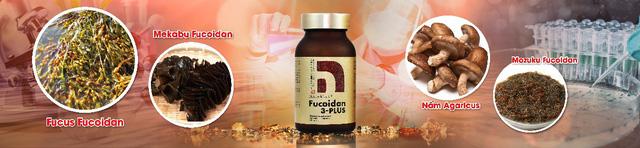 Hoạt chất trong rong nâu hỗ trợ ức chế khối u ung thư - Ảnh 2.