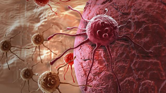 Phát hiện gót chân Achilles của tế bào ung thư - Ảnh 1.