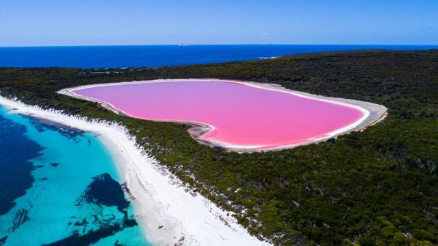Dự án khôi phục màu hồng của Hồ Pink Lake ở Australia - Ảnh 1.