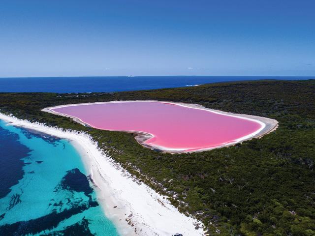 Tìm cách cứu hồ nước hồng không còn... hồng nữa - Ảnh 1.