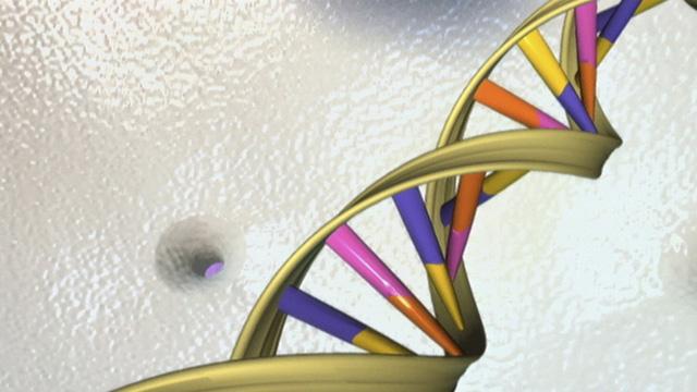 ADN mang dấu ấn virus cổ xưa có khả năng tiêu diệt ung thư - Ảnh 1.