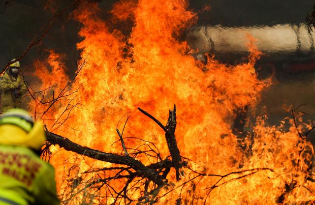 Australia chi tiền điều trị chấn thương tinh thần do cháy rừng gây ra - Ảnh 1.