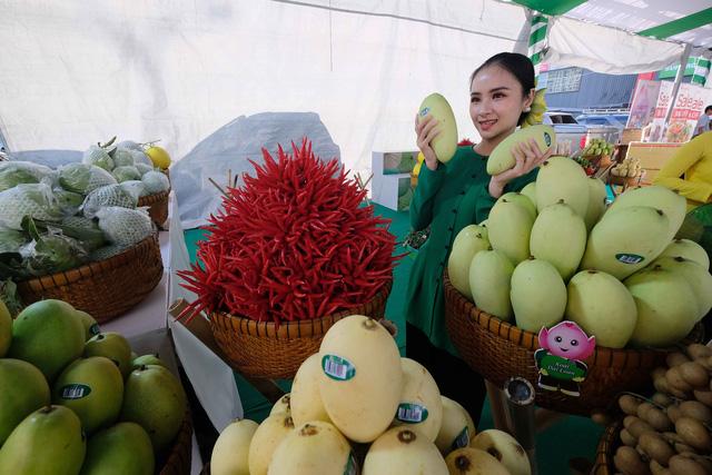 Cá tra cùng 300 nông sản Đồng Tháp lần đầu bơi ra Hà Nội - Ảnh 3.