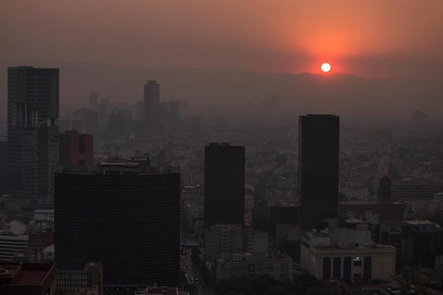 Ô nhiễm không khí có thể tàn phá não người trẻ tương tự bệnh Alzheimer - Ảnh 1.