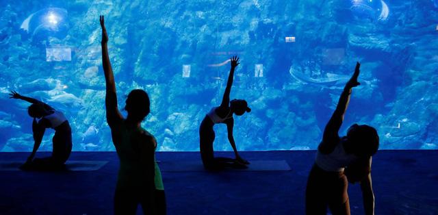 Lớp học yoga giữa lòng đại dương - Ảnh 1.