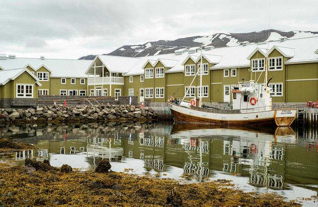 Iceland - Quốc gia chỉ có một con muỗi - Ảnh 1.
