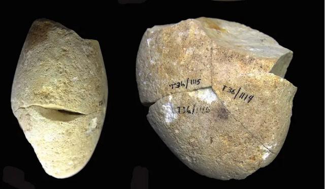 Phát hiện công cụ mài bằng đá lâu đời nhất lịch sử nhân loại - Ảnh 1.