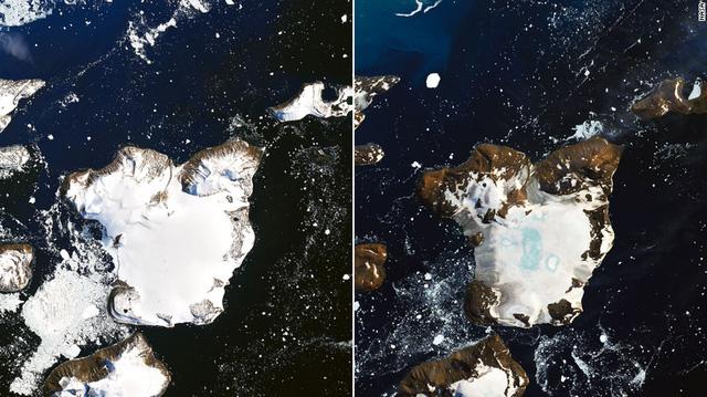 Nóng thiêu đốt Nam Cực, làm tan chảy 20% tuyết trên đảo - Ảnh 1.