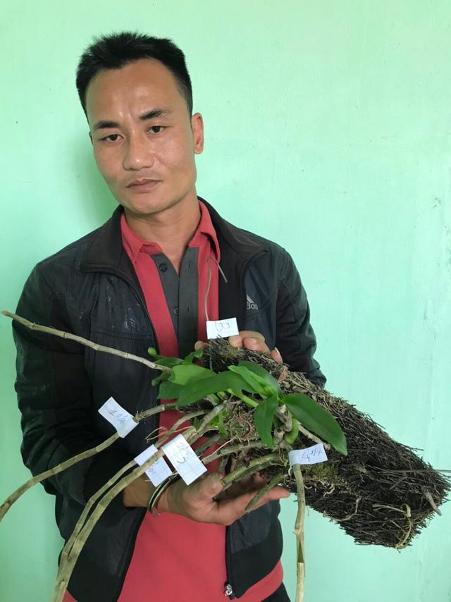 Bắt nhóm nghiện ma túy trộm vườn lan trị giá 4 tỉ đồng - Ảnh 2.