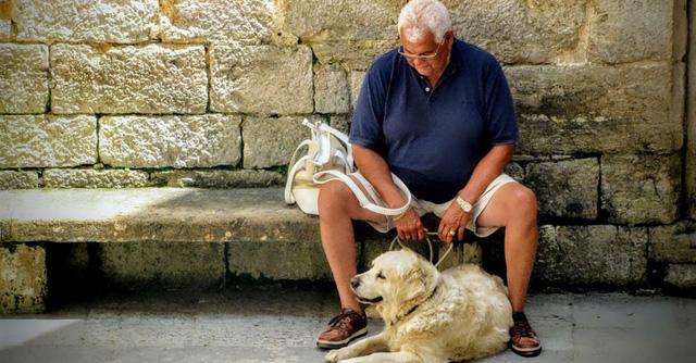 Những con vật nuôi giúp giảm tỉ lệ tự tử ở người cao tuổi - Ảnh 1.