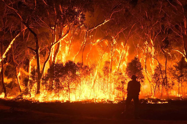 Australia phát triển vệ tinh dự báo cháy rừng - Ảnh 1.