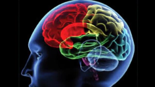 Phương pháp mới khơi gợi trí nhớ trong điều trị người bị tổn thương não bộ - Ảnh 1.