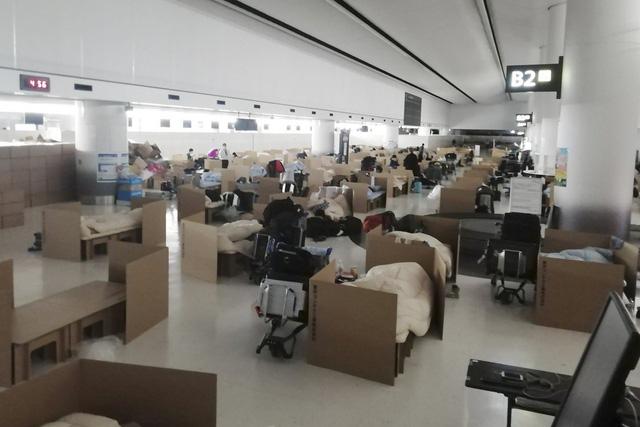 Sân bay Nhật Bản dựng khách sạn bìa carton cho du khách mắc kẹt - Ảnh 1.