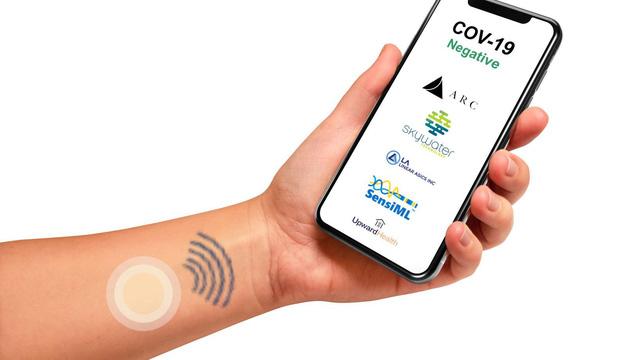Miếng dán đo thân nhiệt giúp phát hiện bệnh COVID-19 - Ảnh 1.