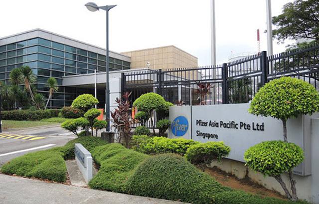 Xuất khẩu dược phẩm của Singapore tăng mạnh nhờ các nước dự trữ thuốc - Ảnh 1.