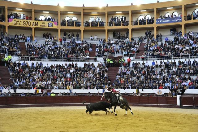 Thủ đô Colombia tiến dần tới mục tiêu cấm bộ môn đấu bò tót - Ảnh 1.