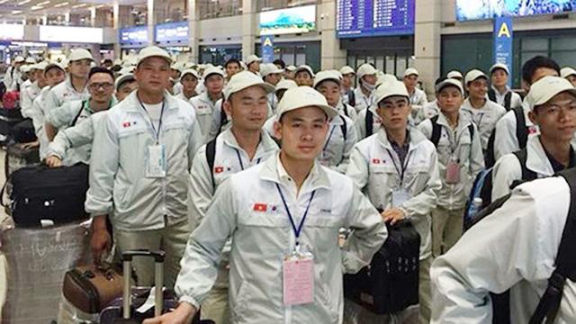 Hàn Quốc gia hạn cư trú 30 ngày cho lao động Việt chưa thể về nước - Ảnh 1.