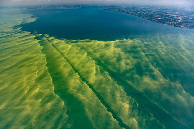 Hồ núi tại Mỹ chuyển màu do tảo diệp lục xâm lấn - Ảnh 1.