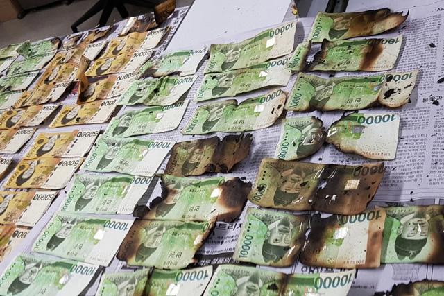 Hàn Quốc: Hơn 1 tỉ USD bị hư hại do người dân tự ý khử trùng tiền mặt - Ảnh 1.