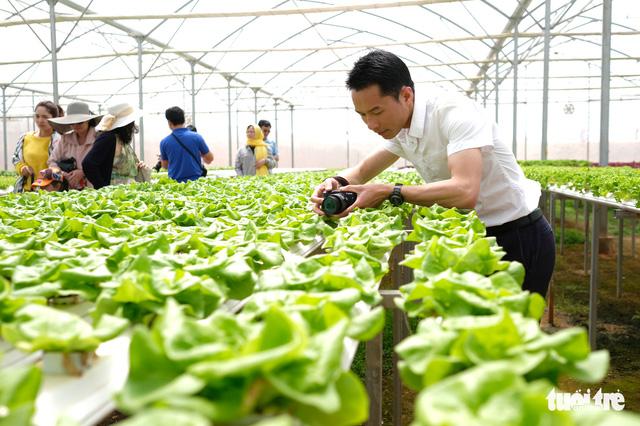 Lo ngại xây dựng trái phép, Đà Lạt dừng phát triển du lịch canh nông - Ảnh 2.