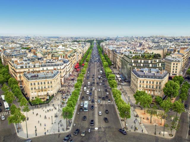 Paris triển khai dự án phủ xanh đại lộ Champs-Elysees - Ảnh 1.