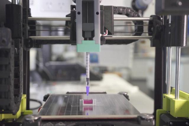 In 3D xương người bằng tế bào sống tại nhiệt độ phòng - Ảnh 1.