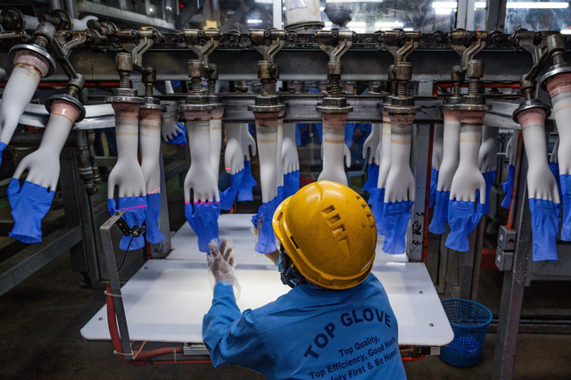 Nhu cầu găng tay cao su toàn cầu có thể vượt cung cho đến năm 2023 - Ảnh 1.