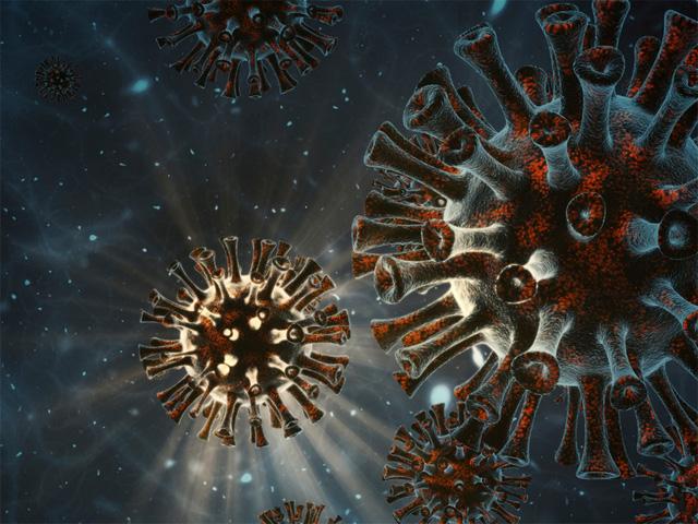 Sóng siêu âm có thể tiêu diệt virus SARS-CoV-2 - Ảnh 1.