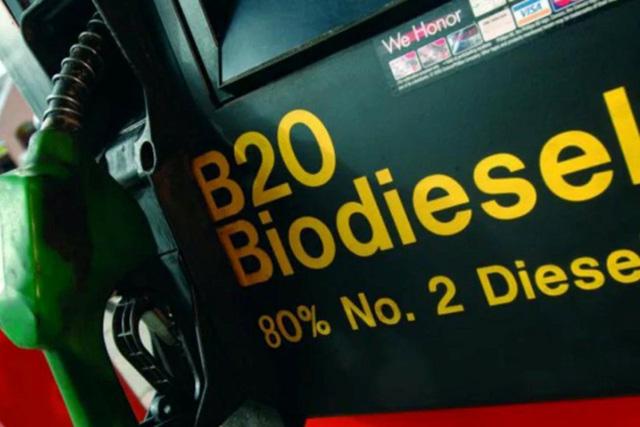 Indonesia là nhà sản xuất dầu diesel sinh học lớn nhất thế giới - Ảnh 1.