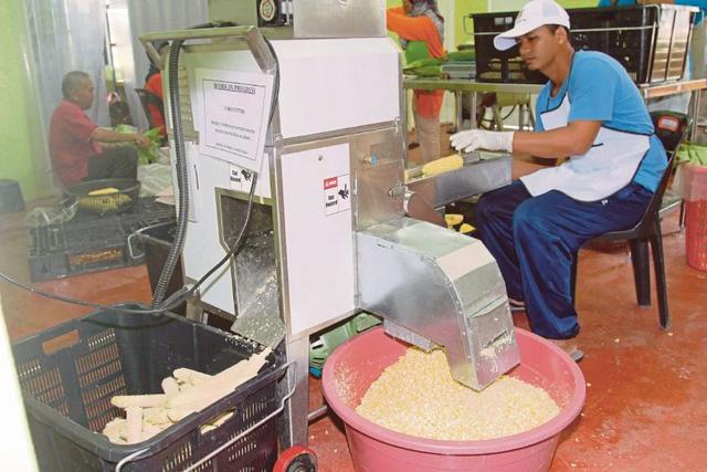 Gần 40% doanh nghiệp vừa và nhỏ Malaysia sẽ phá sản nếu phong tỏa toàn diện - Ảnh 1.