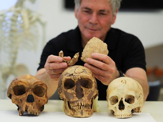 Phát hiện dấu vết của một loài người tiền sử mới tại Israel - Ảnh 1.