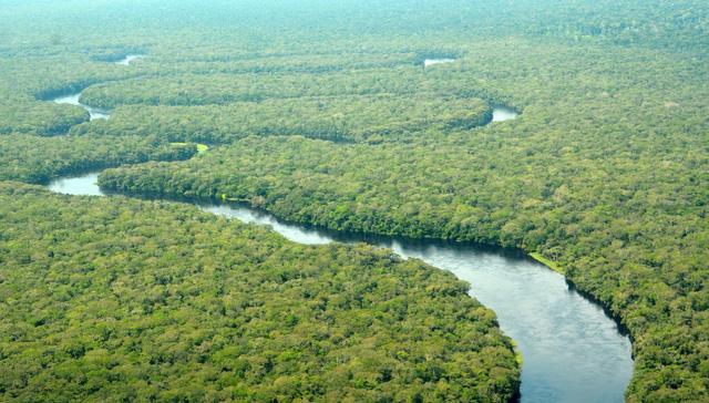 Công viên Salonga ra khỏi danh sách di sản thế giới bị đe dọa của UNESCO - Ảnh 1.