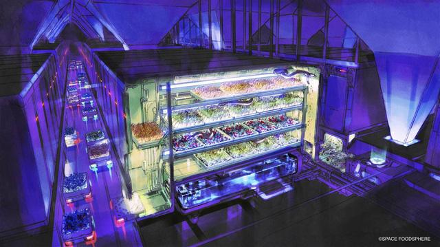 Nhật Bản nghiên cứu sản xuất thực phẩm trên Mặt Trăng - Ảnh 1.
