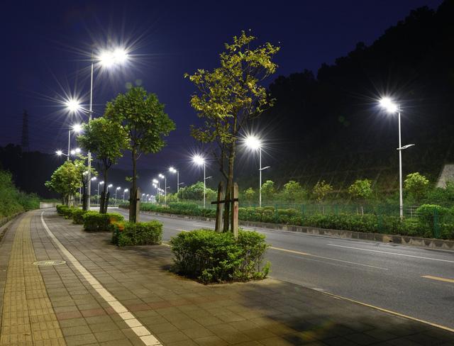 Đèn LED chiếu sáng đường phố làm giảm số lượng côn trùng - Ảnh 1.