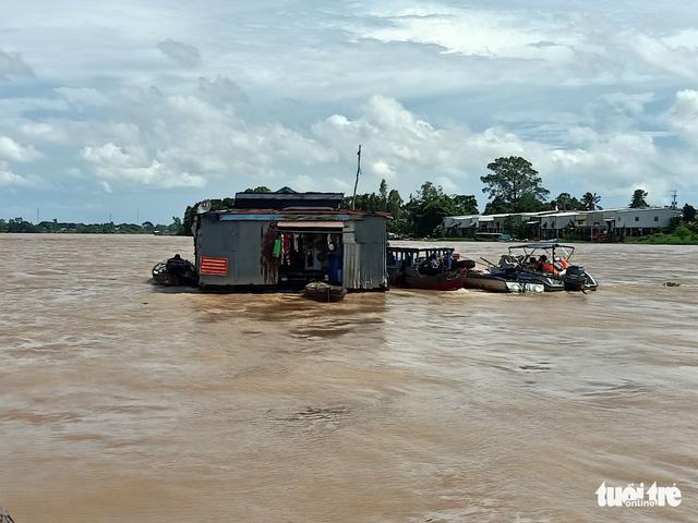 Di dời 108 bè cá trên sông Hậu đi xa 10km để giãn cách, ngăn dịch - Ảnh 1.