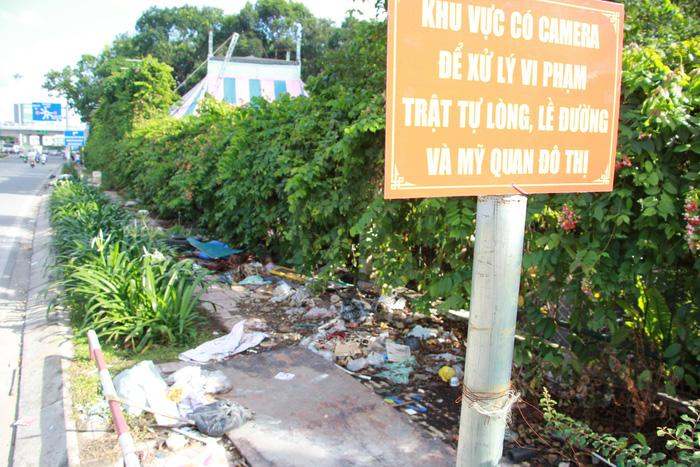 Rác đầy cửa ngõ sân bay Tân Sơn Nhất - Ảnh 5.