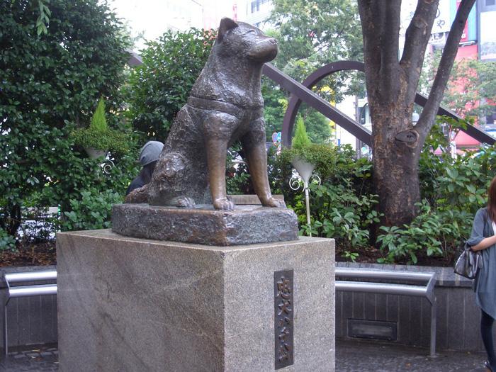 Shinjuku, Shibuya, Harajuku: những điểm không thể bỏ qua khi đến Tokyo - Ảnh 14.