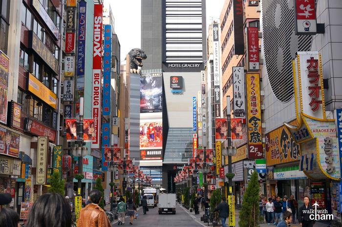 Shinjuku, Shibuya, Harajuku: những điểm không thể bỏ qua khi đến Tokyo - Ảnh 9.