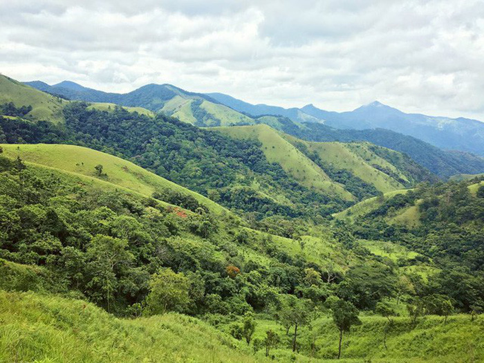 Vì sao bạn thích đi trekking Tà Năng - Phan Dũng? - Ảnh 1.