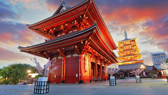 Đi Tokyo đừng quên ăn tối cùng Geisha - Ảnh 8.