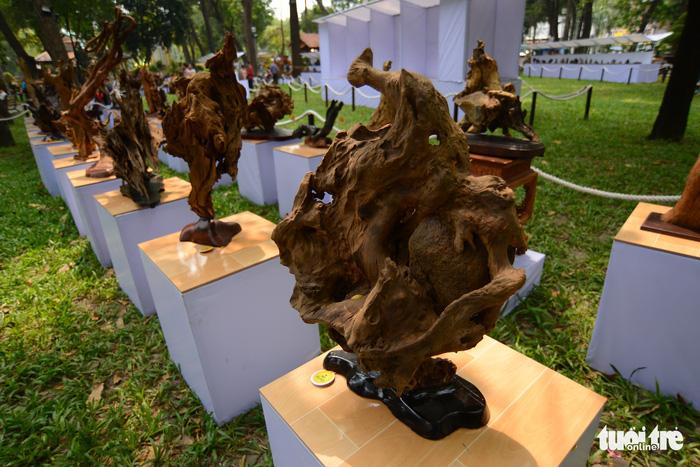 Hội hoa xuân Tao Đàn đã mở cửa đợi khách thưởng hoa - Ảnh 8.
