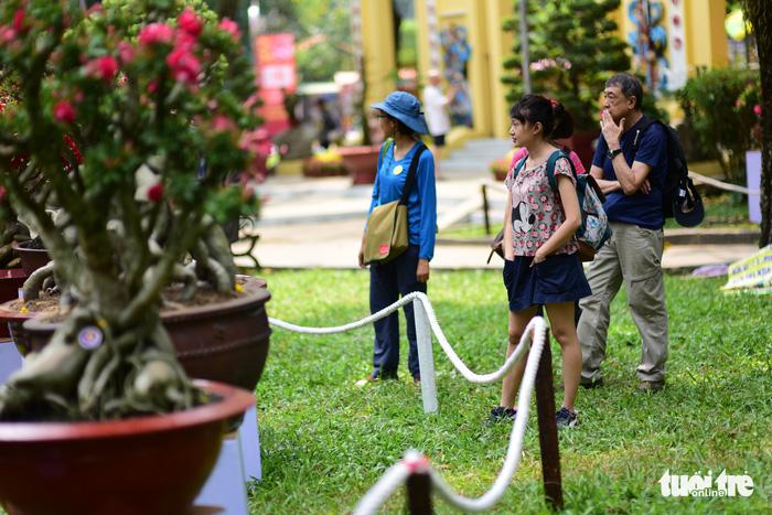 Hội hoa xuân Tao Đàn đã mở cửa đợi khách thưởng hoa - Ảnh 14.