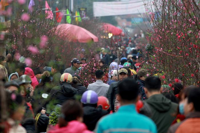 Dân Hà Nội đổ xô ra chợ hoa mua đào chơi Tết - Ảnh 7.