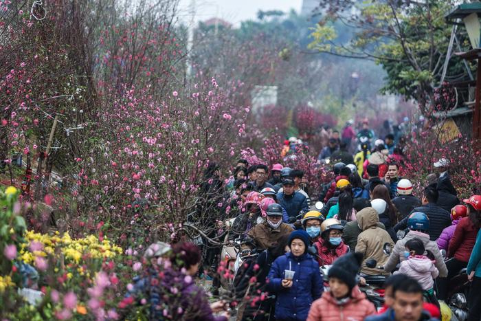 Dân Hà Nội đổ xô ra chợ hoa mua đào chơi Tết - Ảnh 2.