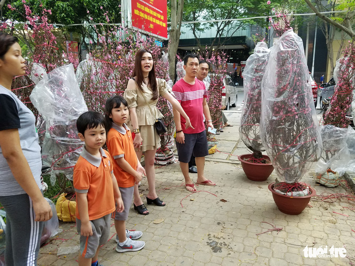 27 Tết: Đào Bắc giảm giá, dân Sài Gòn đổ xô lựa mua - Ảnh 1.